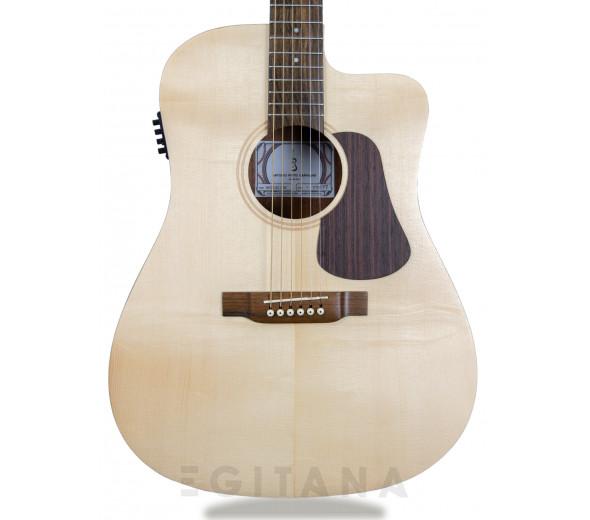 Guitarras Dreadnought APC WG 100 CW