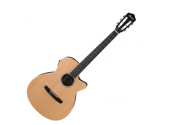 Guitarras clássicas eletrificadas Ibanez AEG7TN-NT Nylon