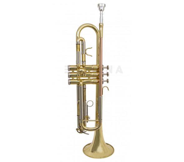 Trompete Wisemann DTR-200